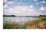 Lake Hico