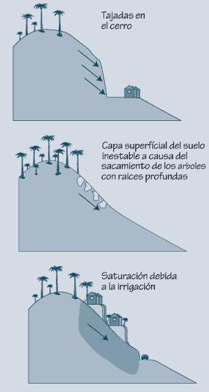 2.2.4: El efecto de las alteraciones humanas al paisaje