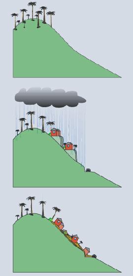 2.2.6: Ejemplo de la falla de la pendiente debida a la saturación de los suelos y la alteración humana