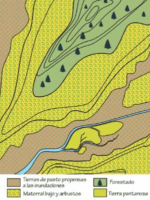 2.7.4: Mapa topográfico con categorías de vegetación