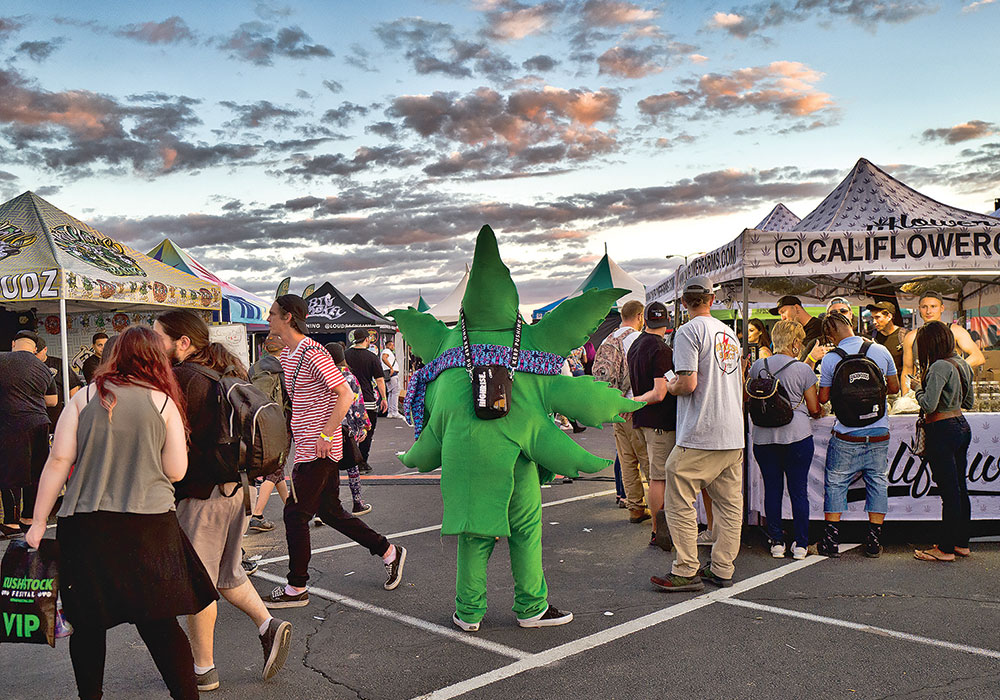 A man dressed as a marijuana leaf walks among attendees at the cannabis-themed Kushstock Festival at Adelanto, California, in 2018. Photo by Richard Vogel/AP.