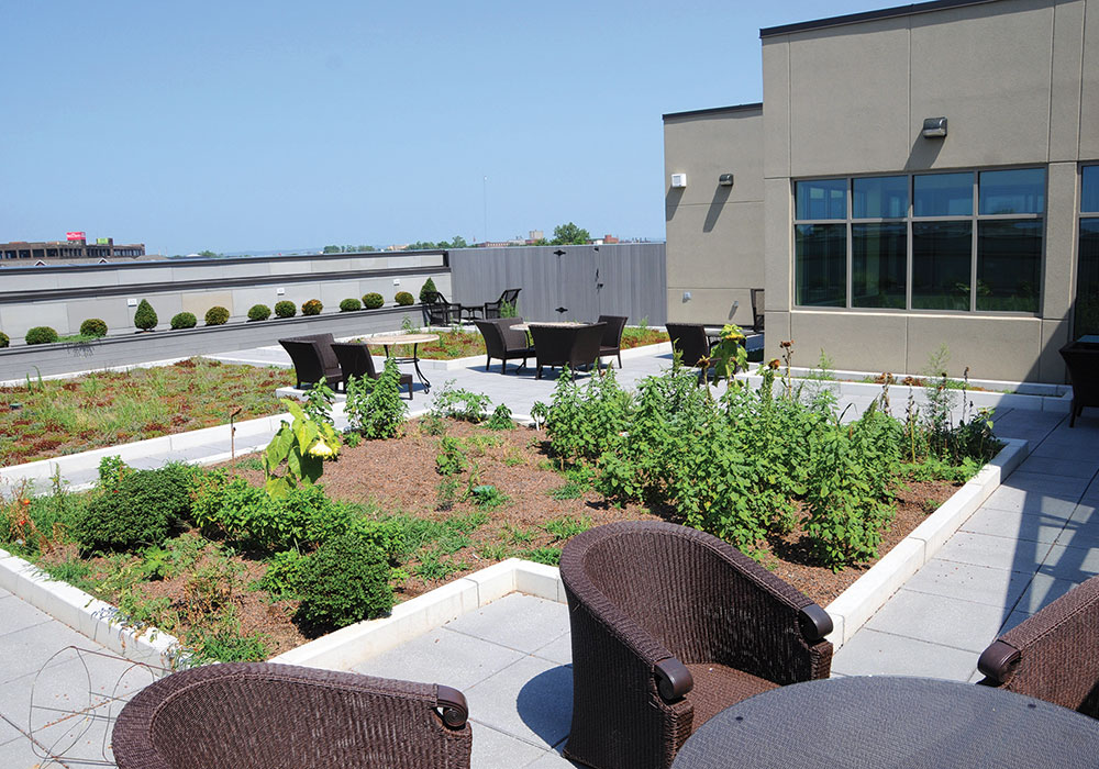 "Green roof at the Gladys & Lewis ""Sonny"" Bass Louisville FSH campus. Photo courtesy Family Scholar House."