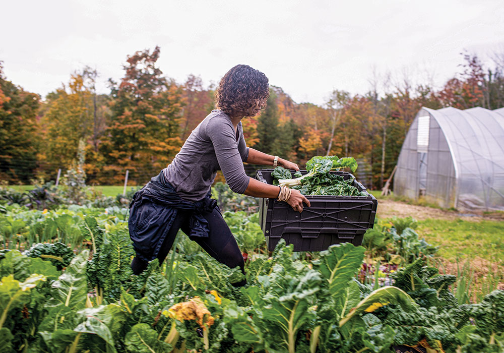 "Soul Fire Farm is an Afro-Indigenous centered community farm committed to ending what food justice advocates call ""food apartheid."" Its food sovereignty programs reach more than 10,000 people a year and include training for farmers of color, urban home gardens, and produce delivery for food-insecure households. Photo by Brian Dawson/The New York Times."