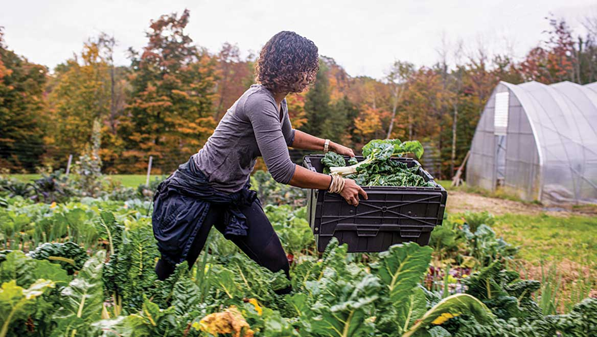 """Soul Fire Farm is an Afro-Indigenous centered community farm committed to ending what food justice advocates call """"food apartheid."""" Its food sovereignty programs reach more than 10,000 people a year and include training for farmers of color, urban home gardens, and produce delivery for food-insecure households. Photo by Brian Dawson/The New York Times."""