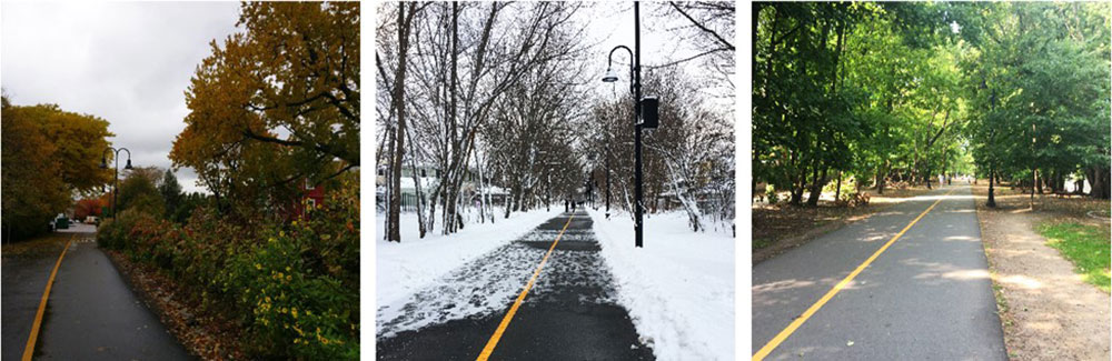 Path in the fall, by Scott Penman 2020; Path in the winter by María de la Luz Lobos 2021; Path in the summer by María de la Luz Lobos 2020.