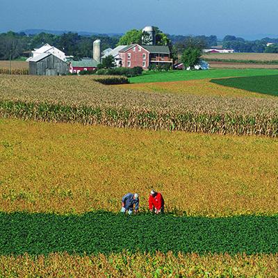 A farm in Lancaster County, Pennsylvania