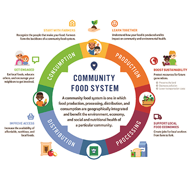 Diagram of food system components
