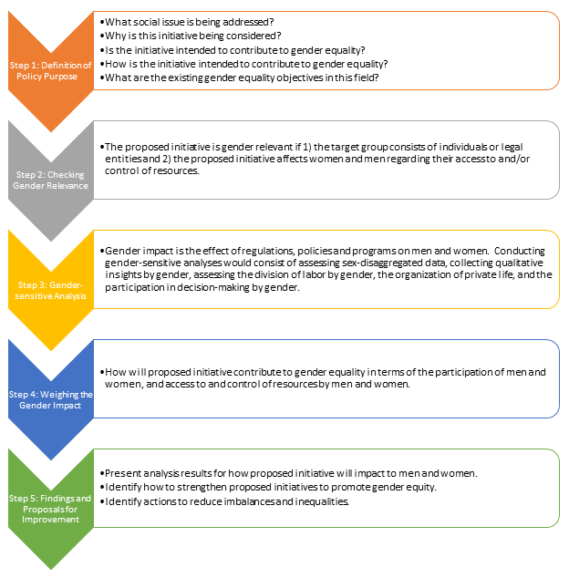 Figure 7. Overview of the gender impact assessment process. Courtesy EIGE.