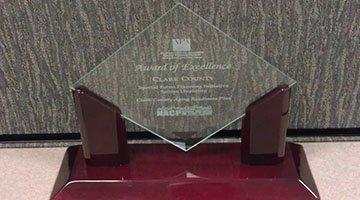APA_Award small.jpg
