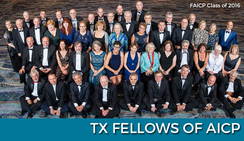 Image showing Texas-chapter fellows of APA's professional institute.