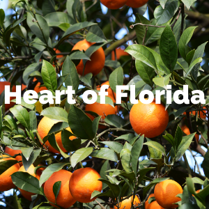heart of florida.png