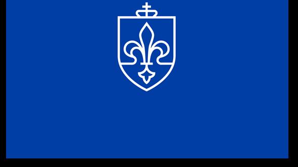 SLU Planning
