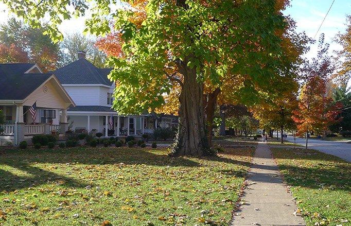 Rountree, Springfield